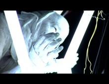 Music Videos Reel (2003-2006)